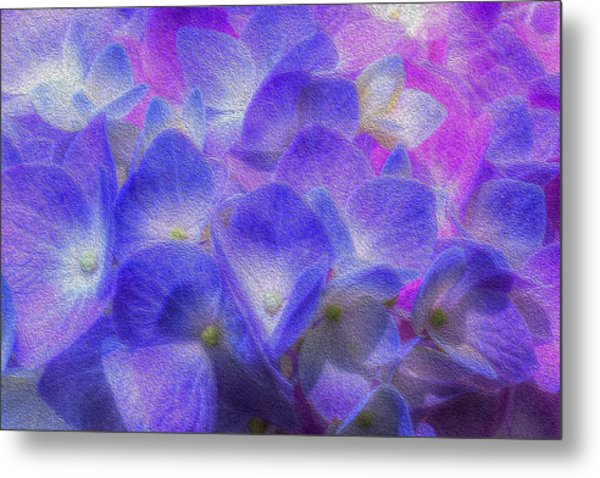 Metal Print featuring the photograph Nature's Art by Paul Wear