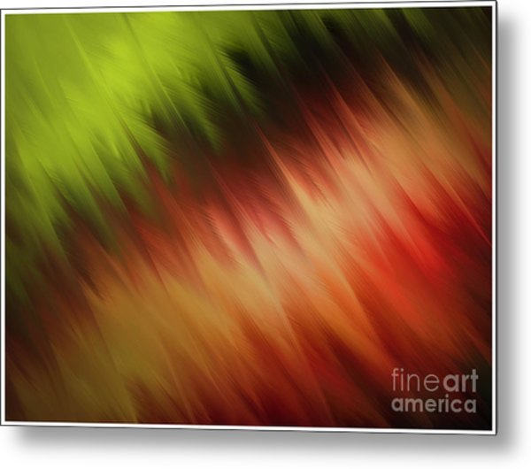 Nature's Feathers Metal Print