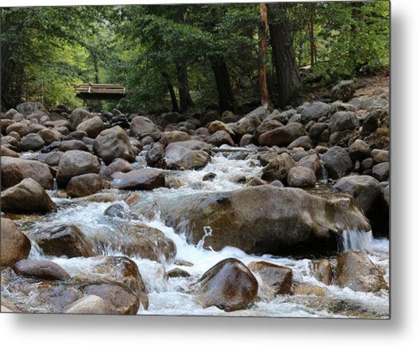 Nature's Flow  Metal Print