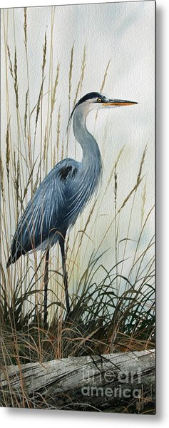 Natures Gentle Stillness Metal Print