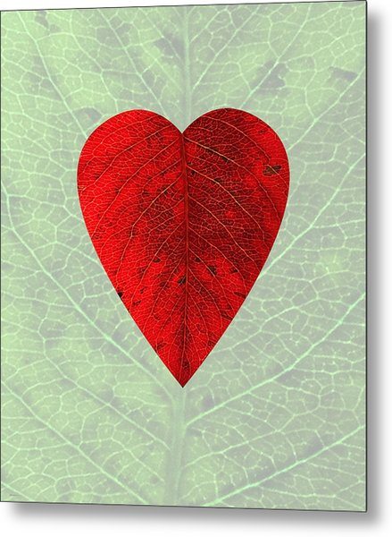 Nature's Heart Metal Print