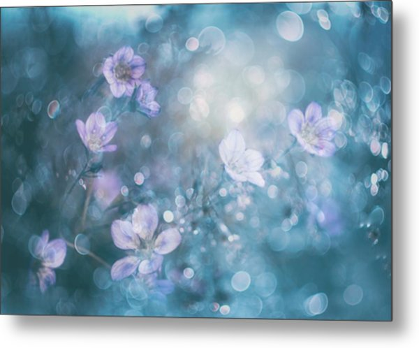 Nature's Jewelry Metal Print
