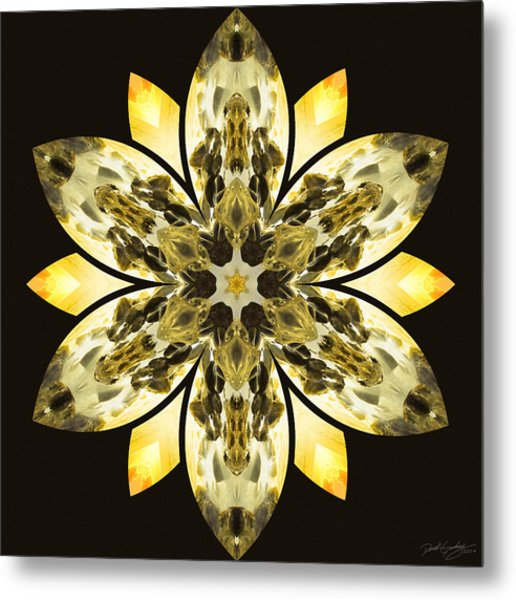 Nature's Mandala 57 Metal Print