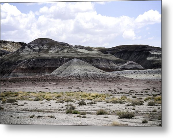 Metal Print featuring the photograph Natures Palette by Judy Hall-Folde