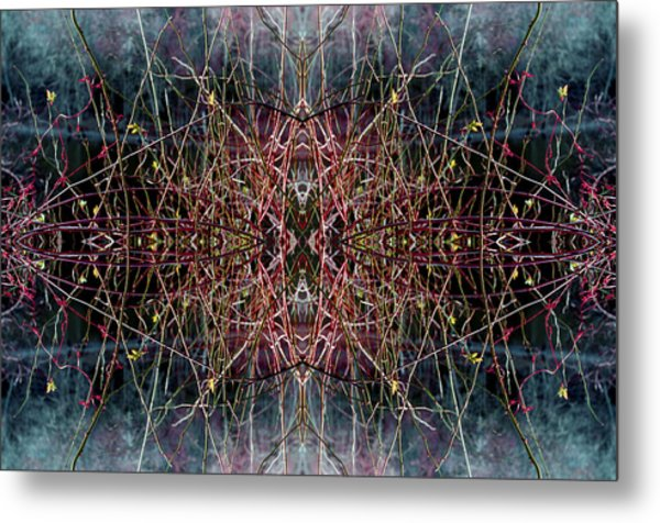 Direct Connection Metal Print