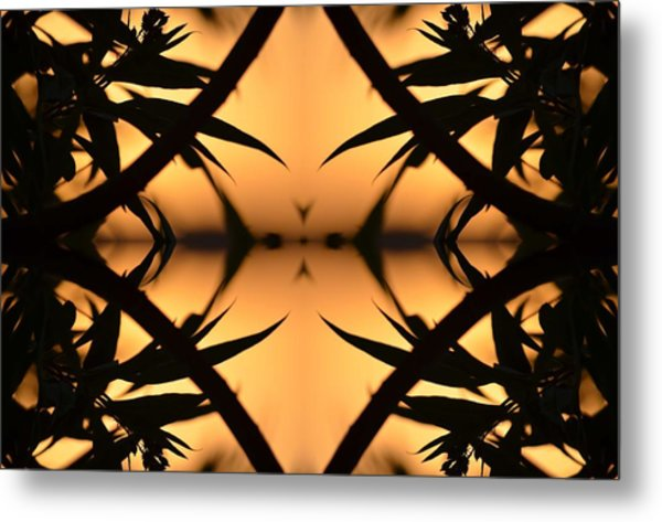 Nature's Window Of Opportunity Metal Print