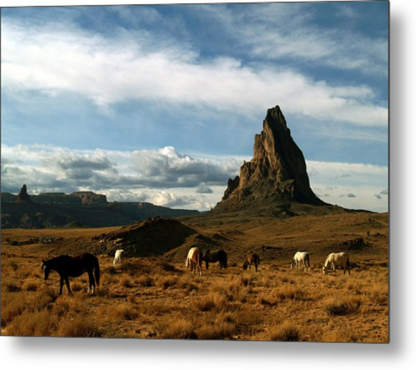 Navajo Horses At El Capitan Metal Print