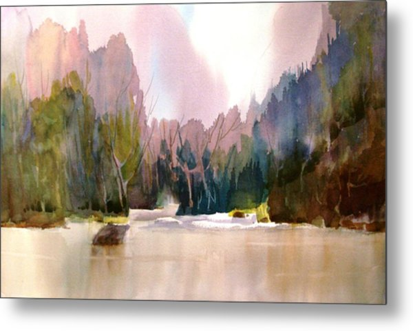 Near Yosemite Metal Print