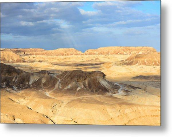 Negev Desert  Metal Print