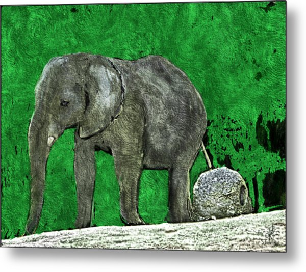 Nelly The Elephant Metal Print