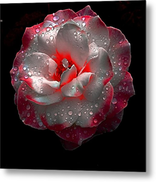 Neon Touch Metal Print