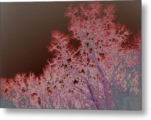 Neon Trees Three Metal Print