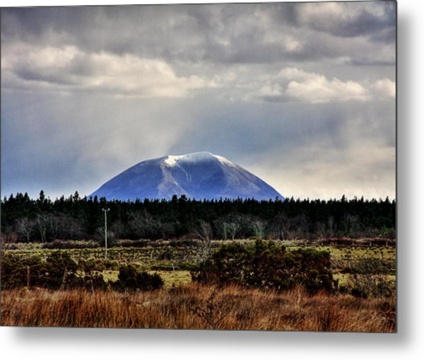 Nephin With A Cap Metal Print by Tony Reddington