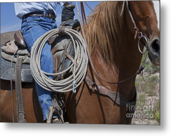 Nevada Cattle Ranch Metal Print