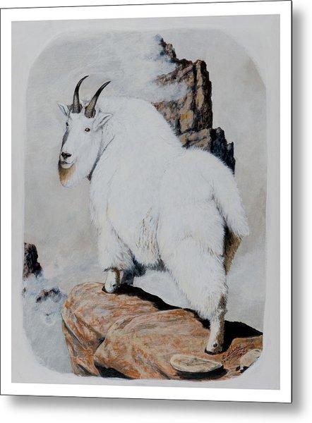 Nevada Rocky Mountain Goat Metal Print