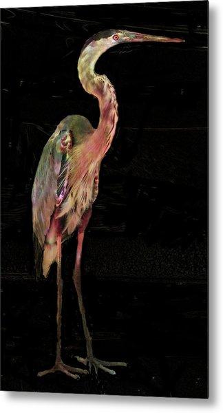 New Coat For The Heron Metal Print by Carol Kinkead