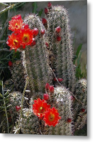 New Mexico Cactus Metal Print