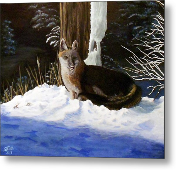 New Mexico Swift Fox Metal Print