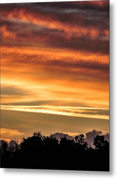 New Normal Metal Print by Christy Usilton
