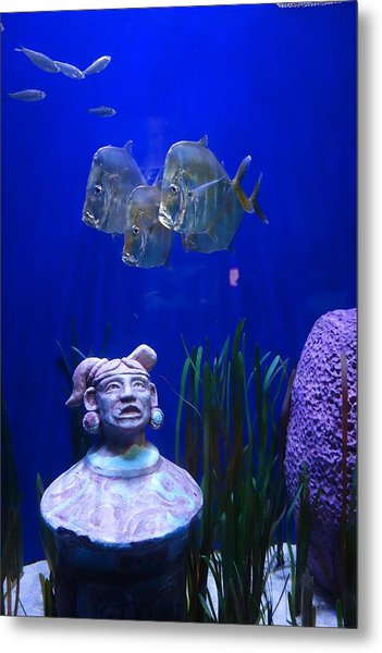 New Orleans Aquarium Metal Print