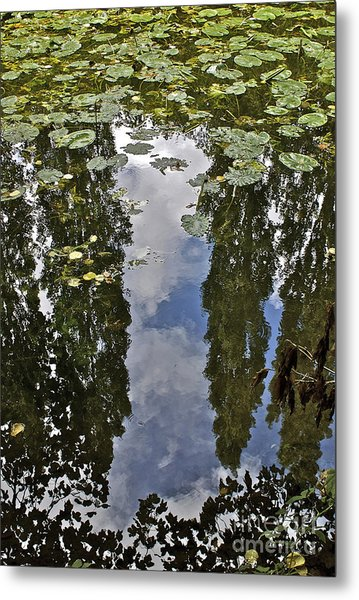 Reflections Amongst The Lily Pads Metal Print