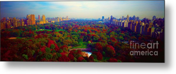 New York City Central Park South Metal Print