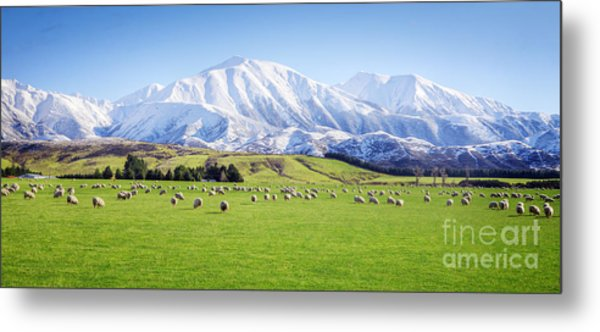 New Zealand Farmland Panorama Metal Print