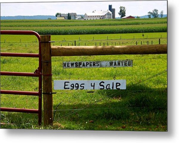 Newspapers Wanted Eggs 4 Sale Metal Print