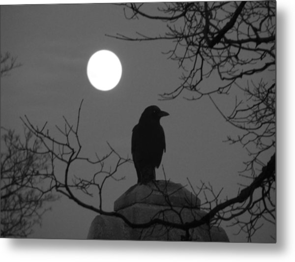 Night Crow And The Full Moon Metal Print