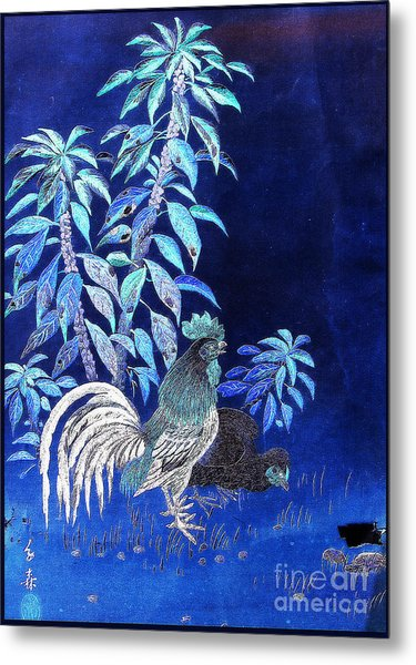 Night Rooster Metal Print by JCYoung MacroXscape
