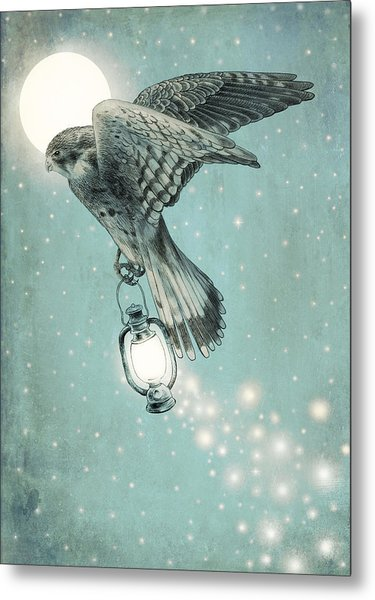 Nighthawk Metal Print