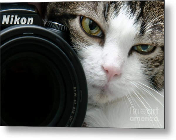 Nikon Kitty Metal Print