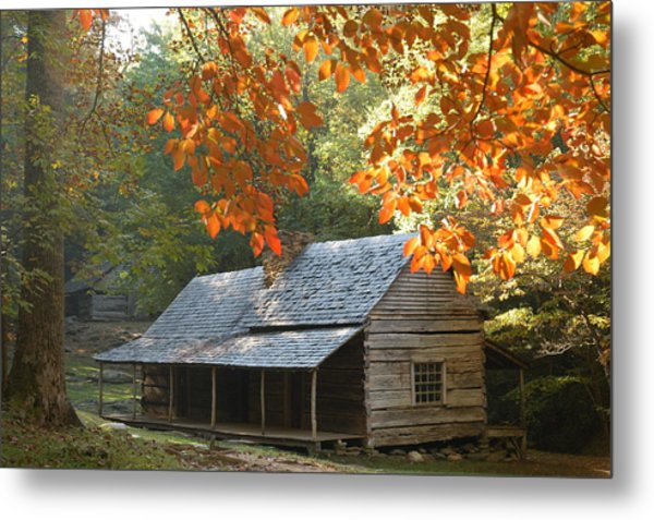 Noah Bud Ogle Farm Autumn Sunshine Metal Print by John Saunders