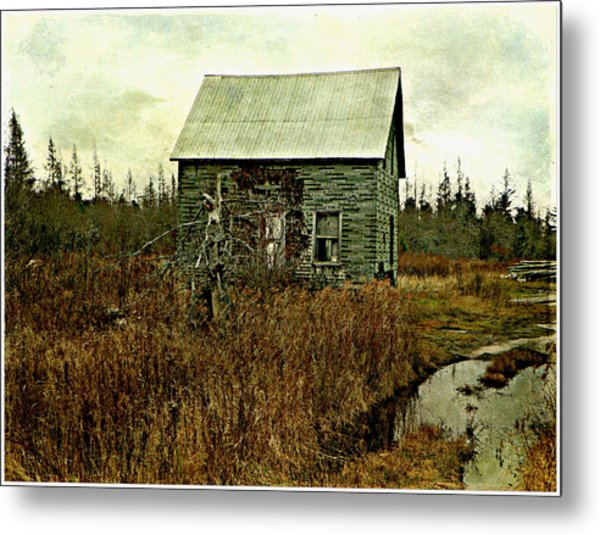 Nobody's Home  Metal Print by Dianne  Lacourciere