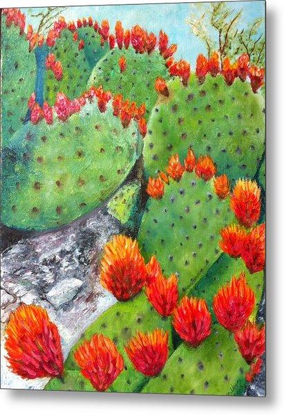 Nopal With Red Flowers  Metal Print by Nora Vega