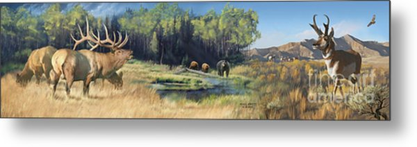 North American Waterhole Metal Print