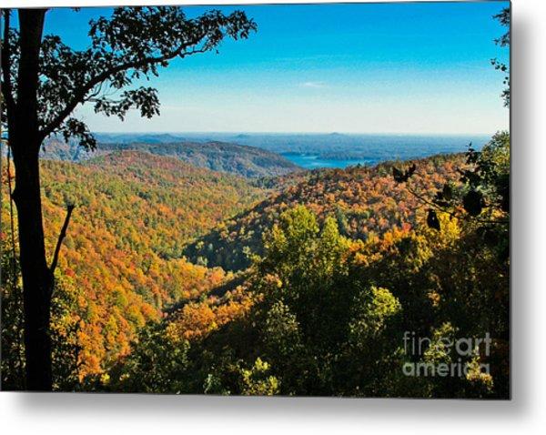 North Carolina Fall Foliage Metal Print