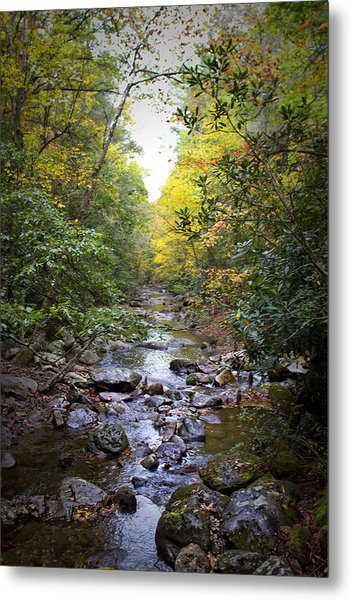North Carolina Typical Metal Print
