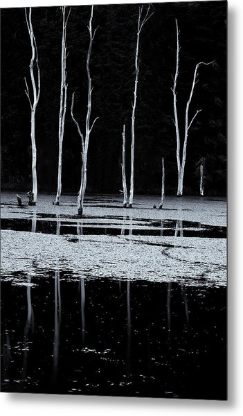 North Pond Twilight Metal Print
