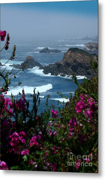 Northern Coast Beauty Metal Print