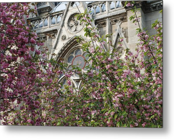 Notre Dame In April Metal Print