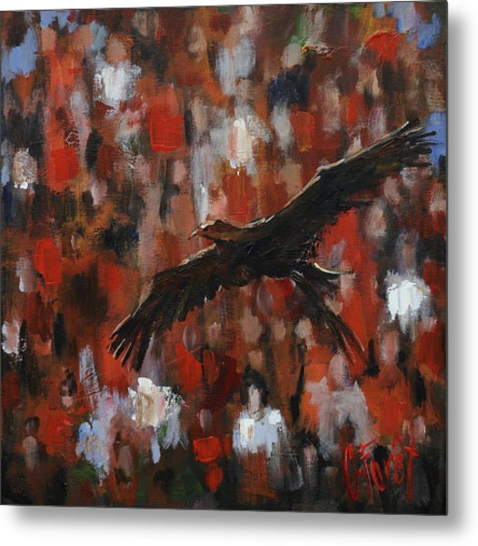 Novas Flight Metal Print