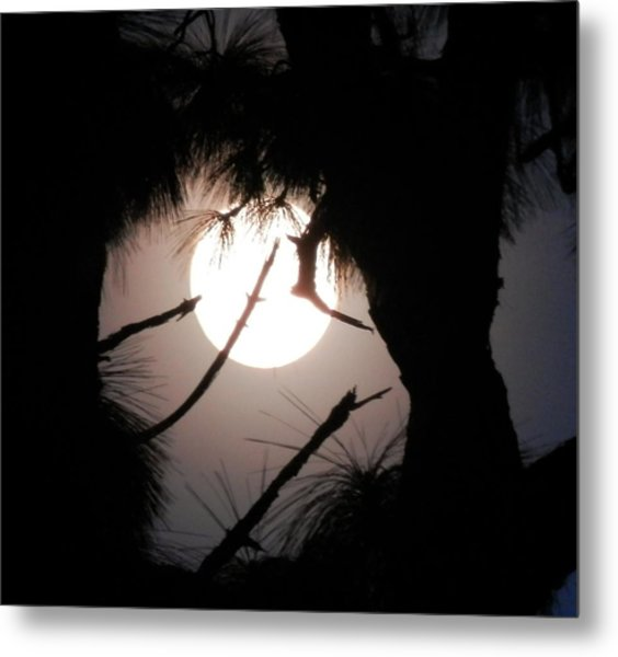 Florida November Full Moon Metal Print