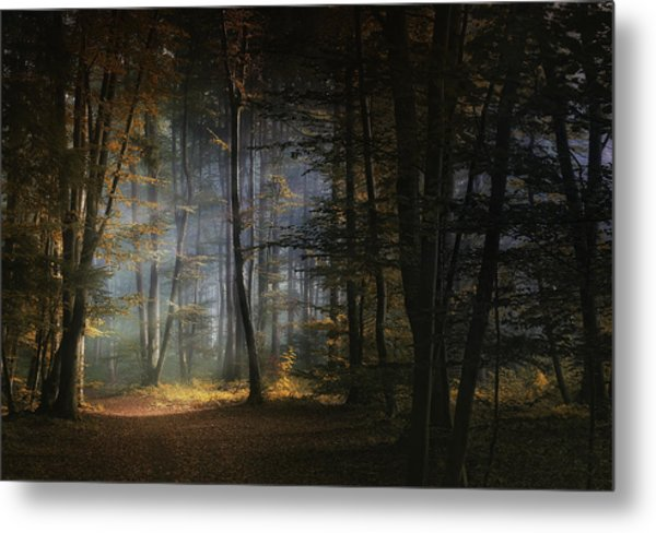 November Morning Metal Print