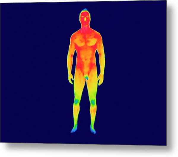 Nude Man Metal Print by Thierry Berrod, Mona Lisa Production