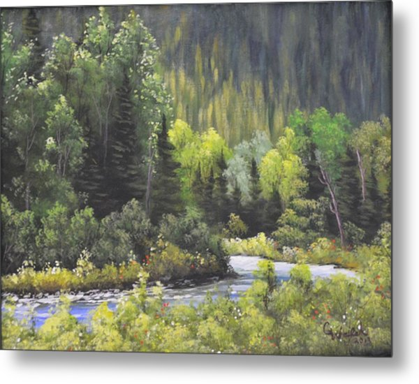 Nw Branch Old Man River Metal Print
