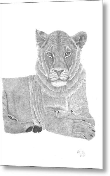 Nyah The Lioness Metal Print
