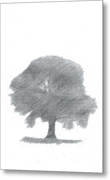 Oak Tree Drawing Number Four Metal Print by Alan Daysh