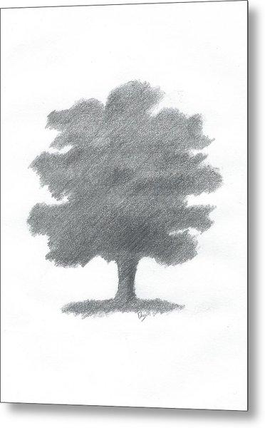 Oak Tree Drawing Number Seven Metal Print by Alan Daysh