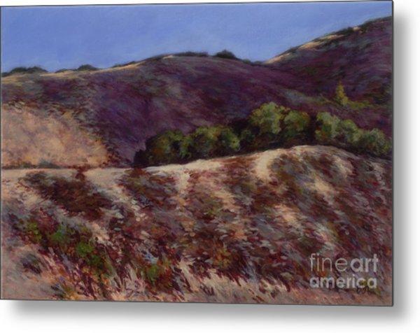 Oaks On A Hillside Metal Print